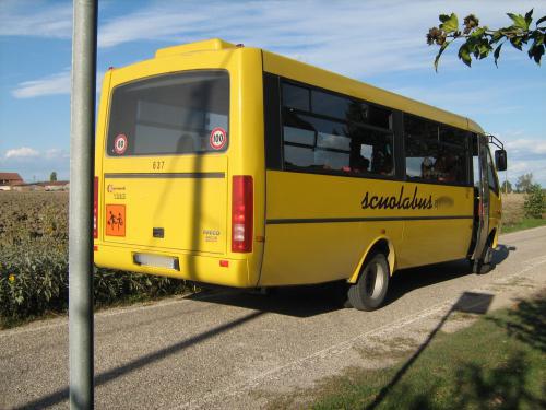 bus, scuola bus, scuola, pulmino