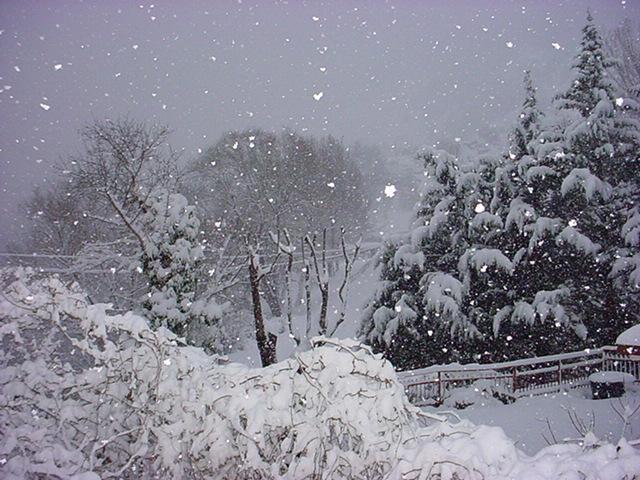 neve paesaggio inverno