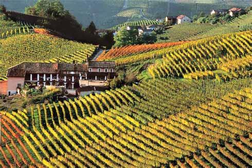 turismo, monferrato, autozug