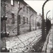 campo di concentramento, shoah