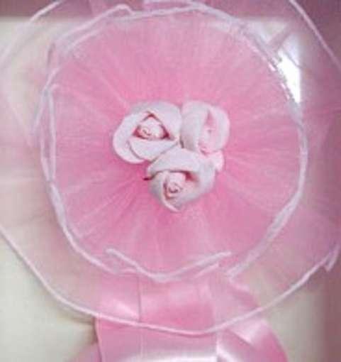 fiocco-rosa, nascita