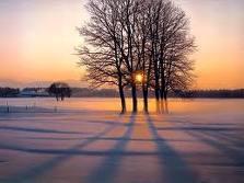 gelo, freddo, neve