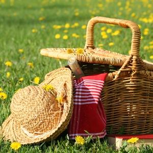 picnic cestino campagna