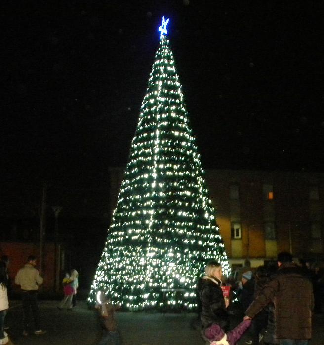 albero di Natale, Borgoratto