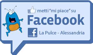 Pulce-su-FB_ok