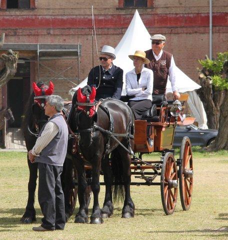 carrozze cavalli cittadella rievocazione