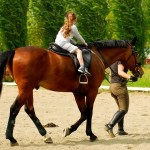 equitazione, cavallo